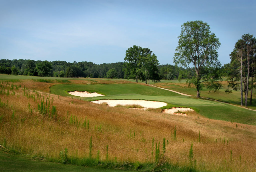 A rough area of wild grasses alongside the fairway.